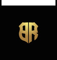 br logo monogram with gold colors and shield vector image vector image