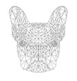contour of french bulldog vector image