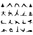 practice yoga vector image vector image