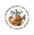 premium organic cocoa label vector image vector image