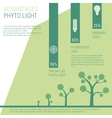 Advantages of phyto light vector image
