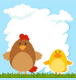 border template with hen and chick vector image vector image