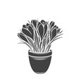 crocus in a pot glyph icon vector image vector image