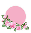 pink roses decorated on pink round paper vector image vector image