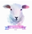set of watercolor Cute sheep vector image vector image