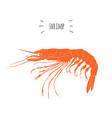 orange shrimp logo isolated on white background vector image