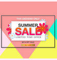 banner summer sale limited time offer 60 off flow vector image