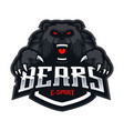 bear sport logo vector image vector image