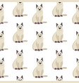 cat seamless pattern cute white kitten in vector image vector image