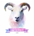 set of watercolor Cute sheep vector image