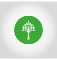 Tree on a green button vector image vector image