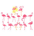 set pink flamingos collection cartoon vector image vector image