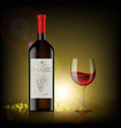 bottle red wine vector image