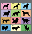 Dog silhouette cards 1 vector image vector image