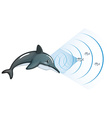Dolphin communicating with other fish vector image