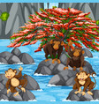 four monkeys at the waterfall scene vector image vector image