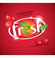 fresh cherries vector image vector image