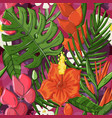 tropical seamless pattern with monstera vector image vector image