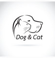 dog and cat on white background pet vector image vector image