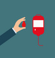 icon donate blood vector image