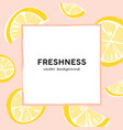 lemon slices summer banner template white vector image