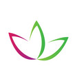 lotus flower symbol abstract spa logo vector image vector image