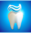 tooth whith toothpaste teeth vector image