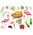 tropical flamingos pink flamingo jungle flowers vector image