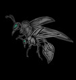 wasp on black background vector image vector image