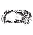 forehead is the region vintage engraving vector image vector image