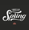 hand drawn lettering hello spring elegant modern vector image vector image