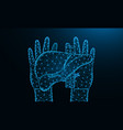 hands and liver low poly design human organ vector image vector image