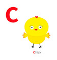 letter c chick bird zoo alphabet english abc vector image vector image