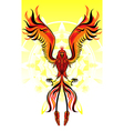 phoenix flame bird vector image