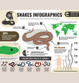 snakes reptiles infographics vector image