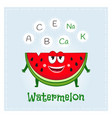 watermelon fruit vitamins and minerals funny vector image vector image