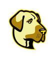 anatolian shepherd dog mascot vector image vector image