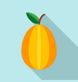 carambola icon flat style vector image