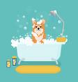 cartoon dog in bath grooming services vector image vector image