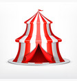 circus tent on white vector image vector image