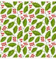 seamless floral pattern with holly vector image vector image