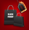 Shopping Paper Bags for Black Friday Sales and vector image vector image