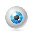 azure blue eye ball vector image