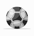 black and white soccer ball vector image vector image