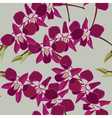 Floral seamless pattern with orchids vector image vector image