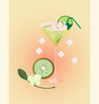 kiwi fruits fresh cocktail glass summer drink vector image vector image