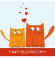 Two cats in love Valentines Day decoration vector image vector image