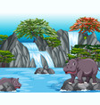 two hippos at the waterfall scene vector image vector image