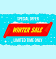 winter big sale concept banner flat style vector image vector image