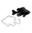 pumpkinseed sunfish silhouette vector image